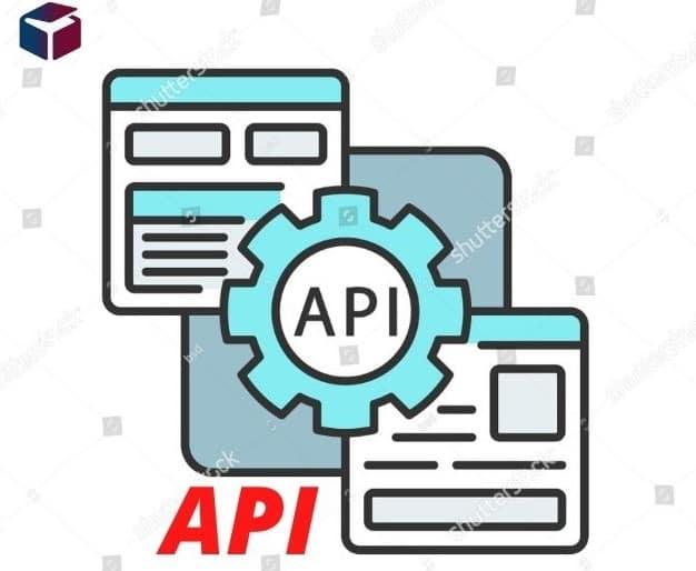 API Application Programming Interface